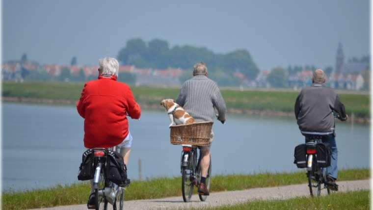 Envejecimiento saludable, Mindfulness, Estrés y Yoga – Enlaces