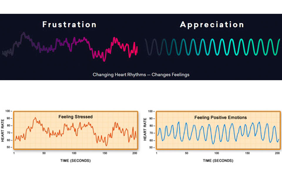 frustracion-graficas-1